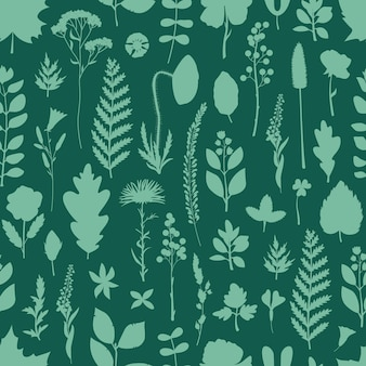 Motif harmonieux de feuilles et de fleurs d'herbier dans un style simple.