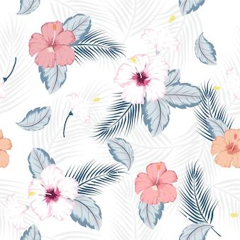 Motif d'hibiscus tropical sans soudure de vecteur