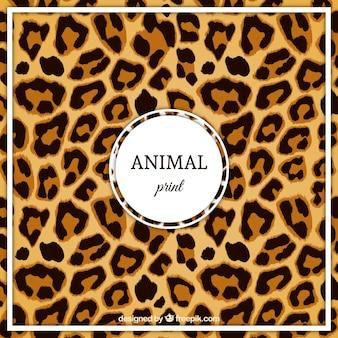 Motif léopard