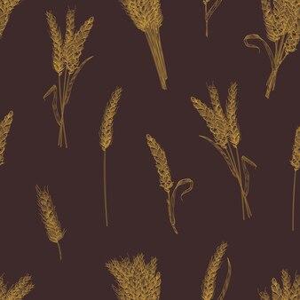Motif naturel harmonieux d'épis de blé ou d'épillets dessinés à la main avec des lignes de contour sur une surface sombre