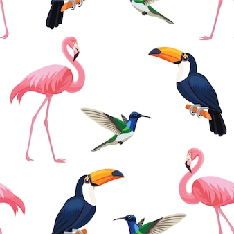 Motif d'oiseaux tropicaux.