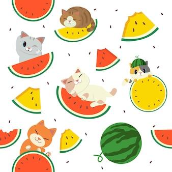 Motif pastèque et chat