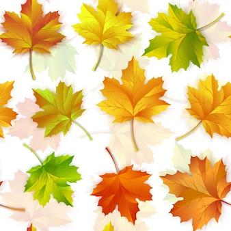 Motif répétitif de feuilles d'automne d'érable