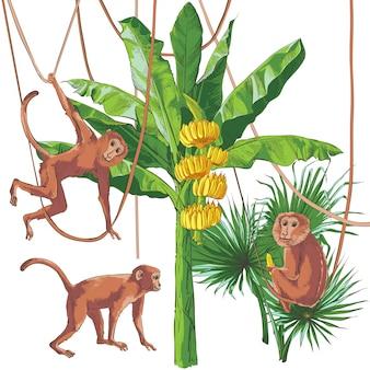 Motif sans soudure de texture vecteur bananes tropical palm.