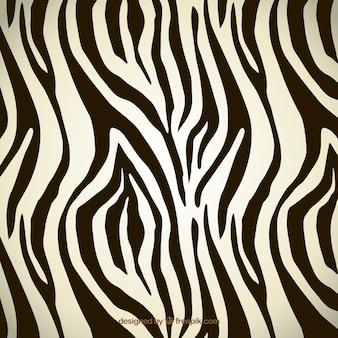 Motif de zebra