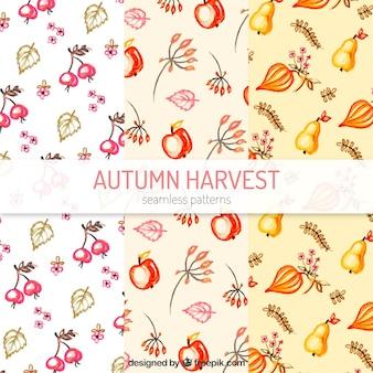 Motifs d'automne avec feuilles et fruits