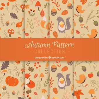 Motifs d'automne avec fleurs et animaux
