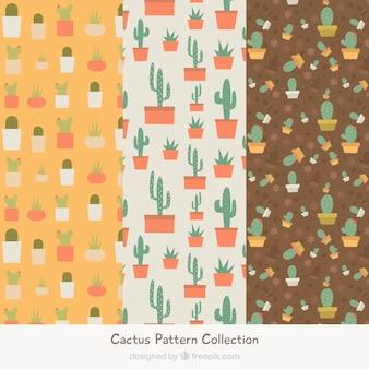 Des motifs de cactus avec un style charmant
