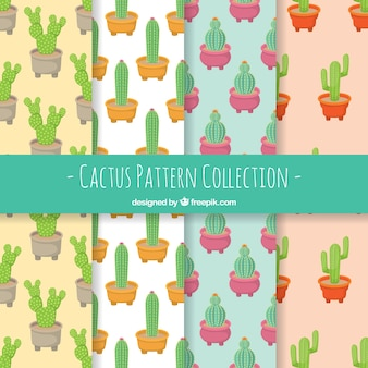Des motifs de cactus avec un style mignon