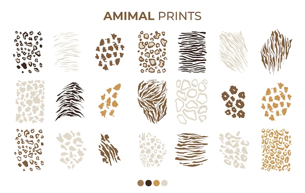 Motifs imprimés tigre, léopard safari, peau de jaguar