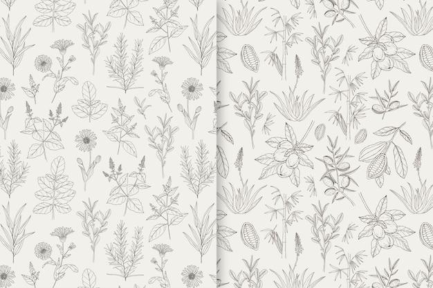Motifs naturels et à base de plantes dessinés à la main
