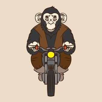 Motor club de singe