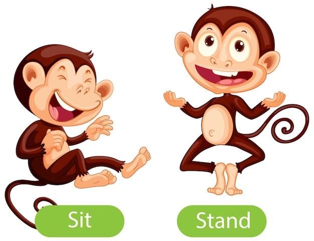 Mots opposés avec assis et debout