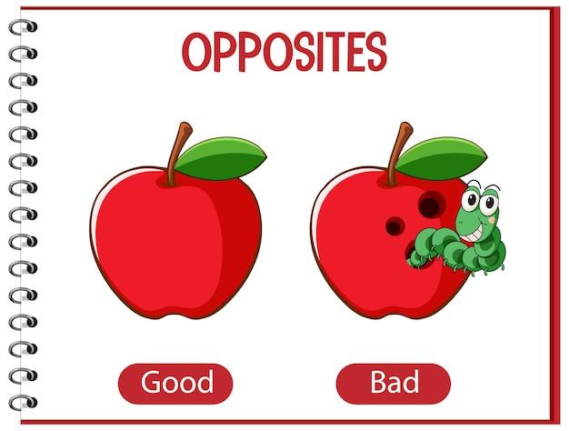 Mots opposés avec bons et mauvais