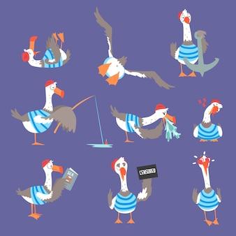 Mouettes de dessin animé avec différentes poses et émotions définies, personnages d'oiseaux comiques mignons