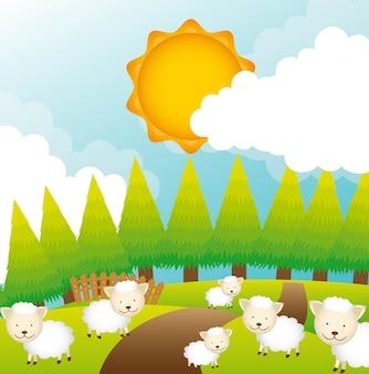 Moutons sur le terrain