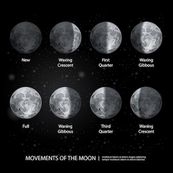 Mouvements des phases de la lune illustration vectorielle réaliste