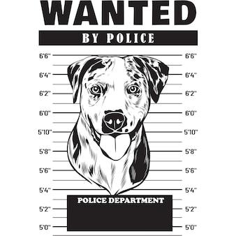Mugshot de catahoula dog holding banner derrière les barreaux