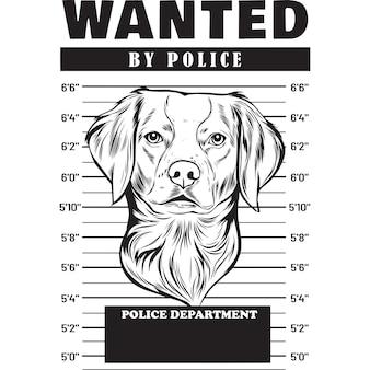 Mugshot de chien épagneul breton tenant une bannière derrière les barreaux