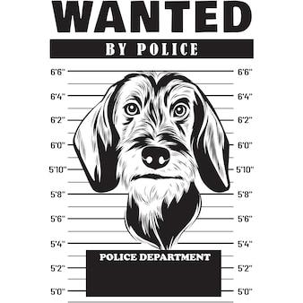 Mugshot de chien teckel à poil dur holding banner derrière les barreaux
