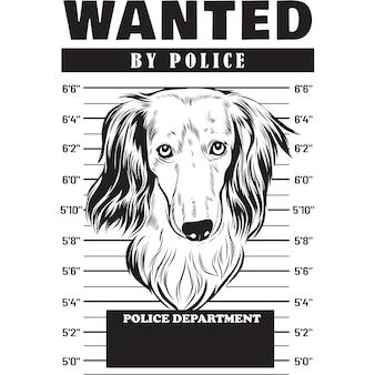 Mugshot de chien teckel poil long holding banner derrière les barreaux