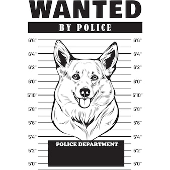 Mugshot de corgi dog holding banner derrière les barreaux