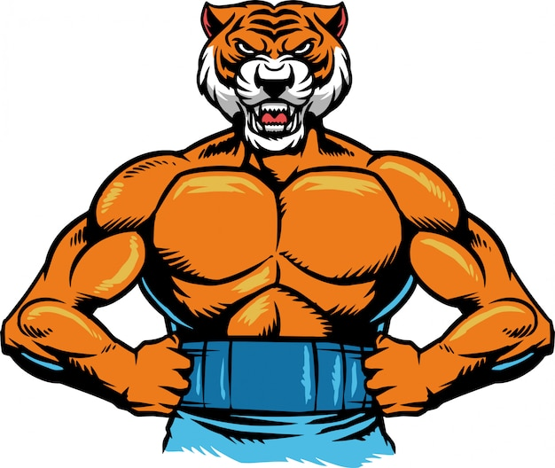 Muscle tigre