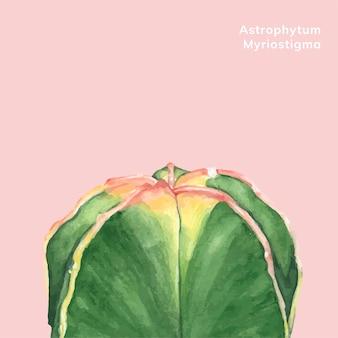 Myriostigma astrophytum dessiné à la main