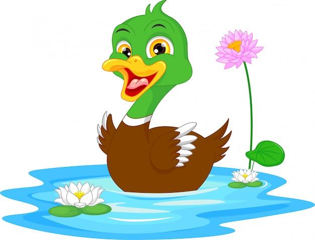 Nage de canard
