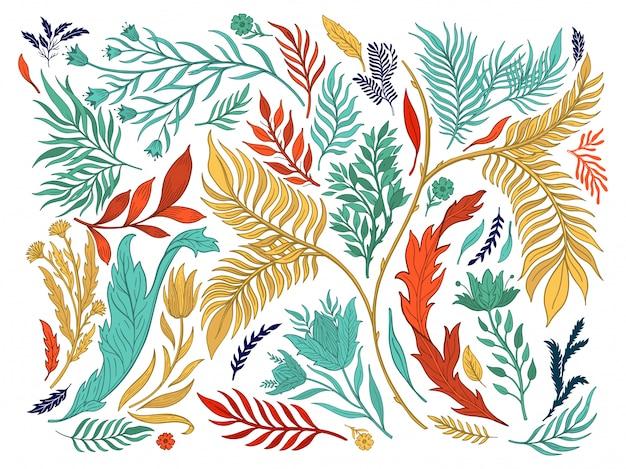 Nature abstraite définie collection dessinés à la main.