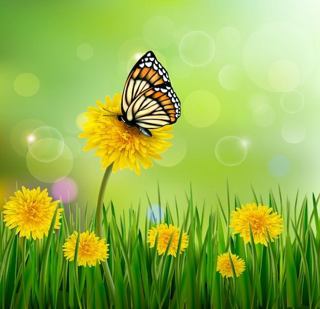 Nature avec des pissenlits et un papillon