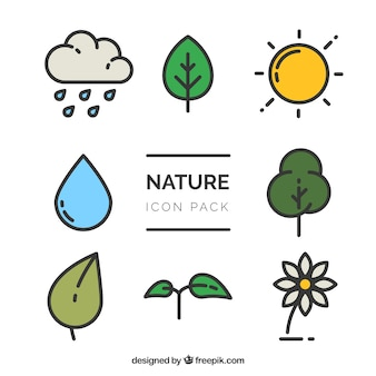 Nature vectorielle paquet