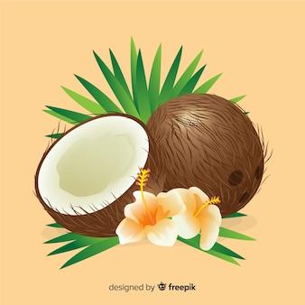Noix de coco dessinée à la main