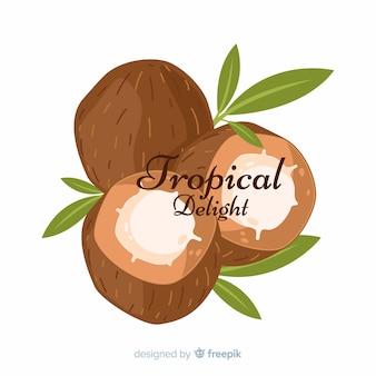 Noix de coco dessinées à la main avec fond de feuilles