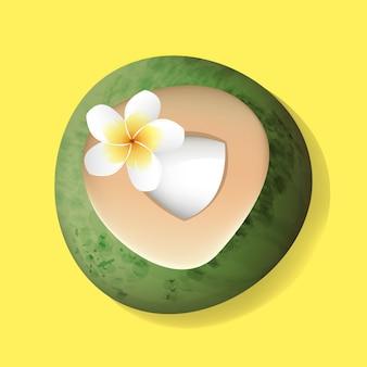 Noix de coco ouverte coupe fraîche avec illustration de fleur