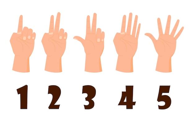 Nombre de main