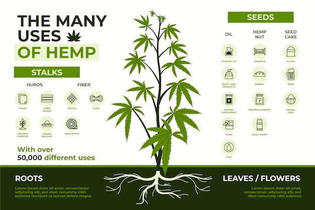 De nombreux avantages pour la santé de l'utilisation du cannabis médicinal