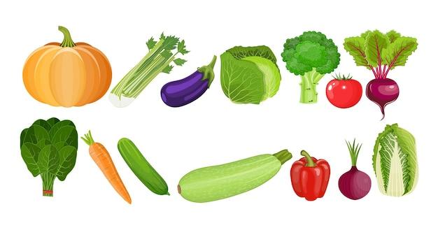 Nourriture écologique. aliments biologiques frais, alimentation saine. des légumes