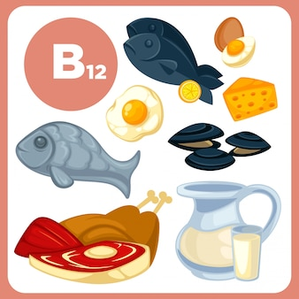 Nourriture des icônes avec de la vitamine b12.