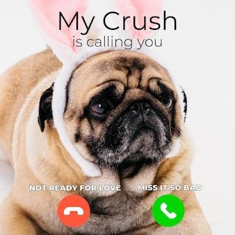 Nouveau mème d'appel drôle