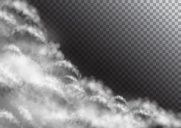 Nuages blancs transparents