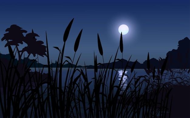 Nuit, à, herbe lune, arbre, silhouette, et, lac
