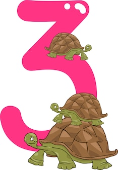 Numéro trois et trois tortues