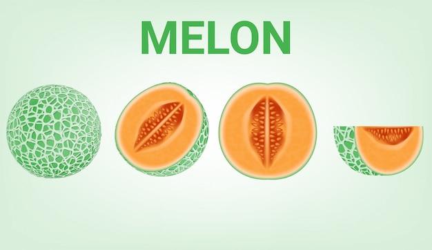 Objet, ensemble de melon frais