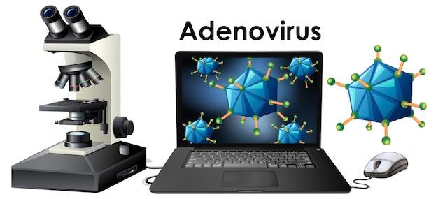 Objets du virus nommé adenovirus