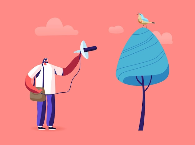 Observation des oiseaux, illustration d'ornithologie professionnelle
