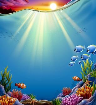 Océan tropical de rêve avec coucher de soleil
