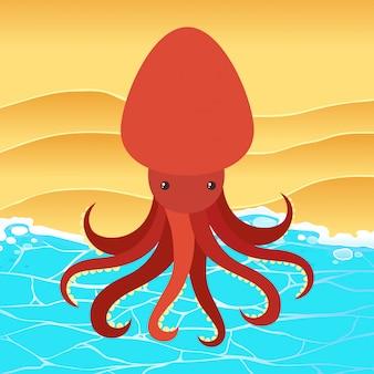 Octopus rouge sur la plage