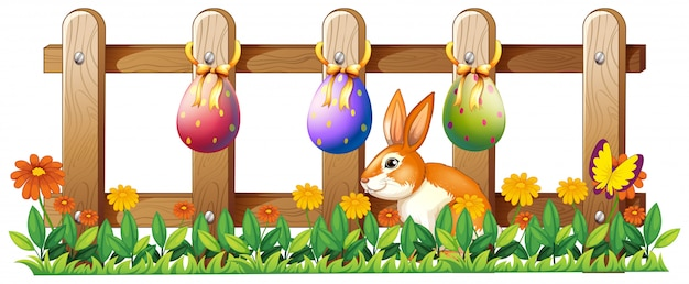 Oeufs de pâques à la clôture et un lapin