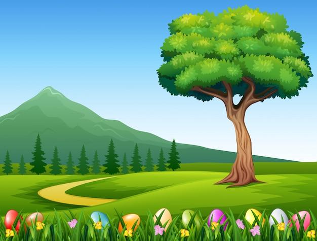 Oeufs de pâques colorés sur l'herbe verte avec beau paysage